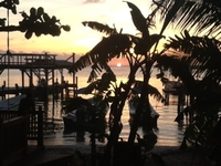 Sunset In Roatan