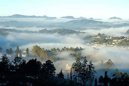 Mysore, Ooty and Bandipur Photos
