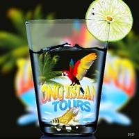 Longisland Tours