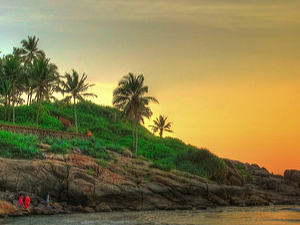 Ever Green Kerala in Budget Price Photos
