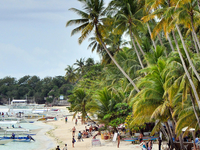 Alona Beach Panglao15