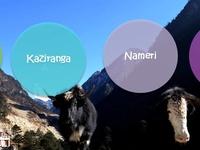 Ghy-kaziranga-Nameri-Tawang