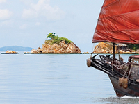 Vietnam Highlands