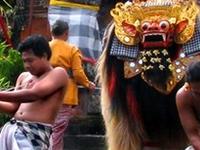 Ubud & Kintamani Volcano Tour