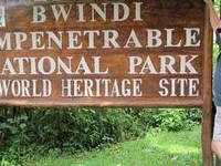 Bwindi Impenetrable & Mgahinga Gorilla National Park Tour