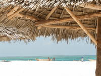 Welcome To Zanzibar Beach