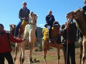 Atlas Camel Trek Photos