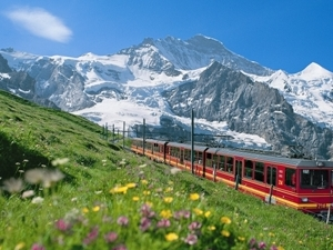 Zermatt to Zurich Tours