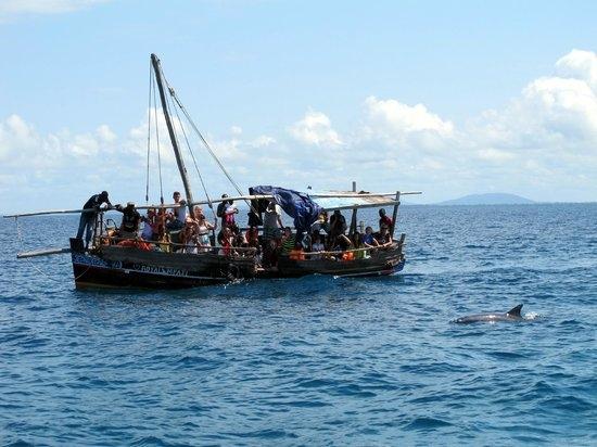 Photography Trip to Wasini Island Photos