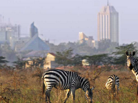A Visit to Nairobi National Park