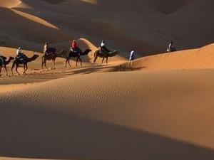 Desert Tour from Marrakech Photos