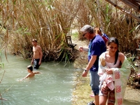 Jungle Of Rhodes Near The Small Lake