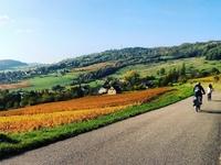 Hautes Cotes De Beaune Cycling Ride