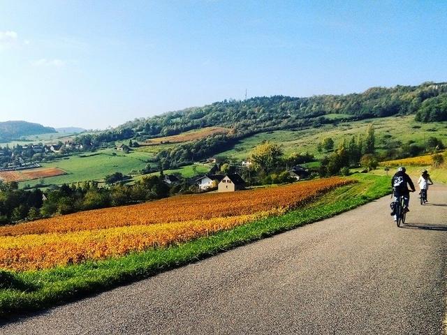 Bike and Wine Week End in Burgundy Photos