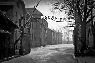 Auschwitz - Birkeanu and Wieliczka Salt Mine Tours Photos
