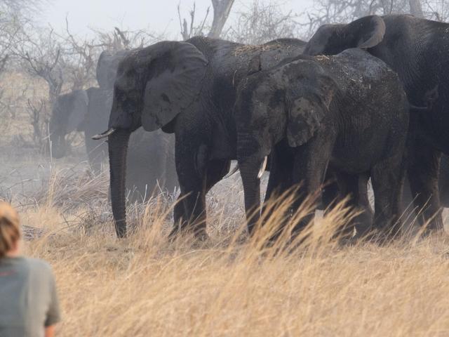 Yoga Wildlife Retreat - Namibia Photos