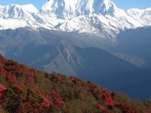 Annapurna Sunrise Trekking Photos