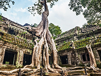 Welcome to Angkor Zone Tour Package