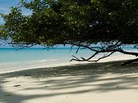 Havelock Andaman Islands