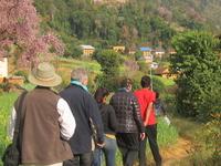 Rural Village Timal