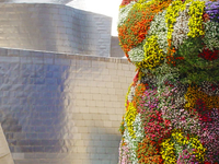 Guggenheim Bilbao: Guided Tour