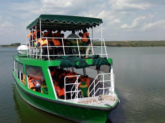 Wild Safari Photos