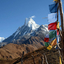 Himalayan Pvt.ltd