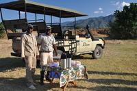 Game Drive At Kiambi Safari Lodge