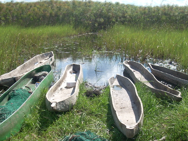 Perfect Days in the Okavango Delta Photos