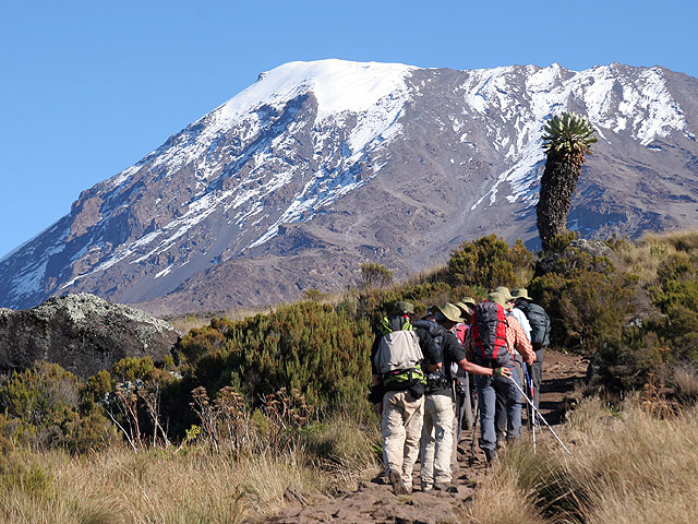 Mountain Kilimanjaro Marangu Route Photos
