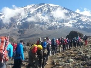 Climb Mount Kilimanjaro - Lemosho Route Photos