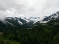 Himalayan Alpine