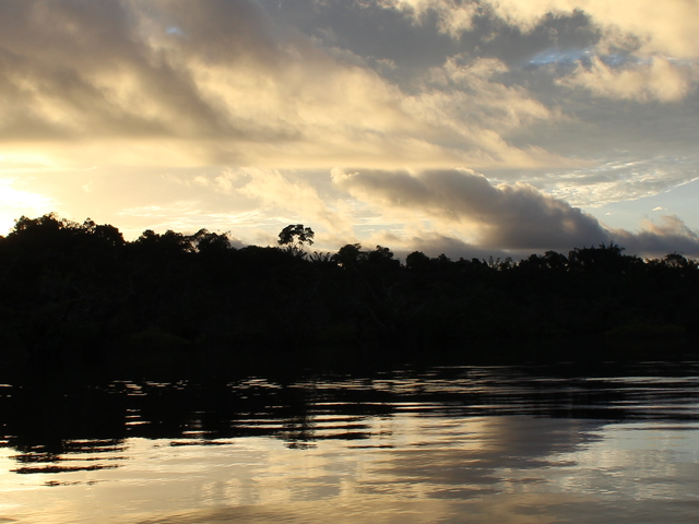 Cuyabeno Wildlife Reserve - Amazon Rainforest Photos