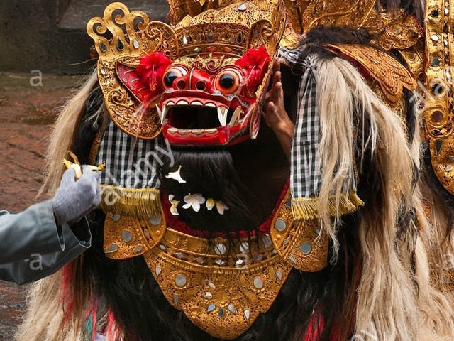 Full Day Package Bali Photos