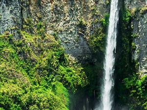 Natural Diversity of Sumatra Ecotourism Fotos