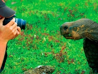 Andes And Galapagos 8 Day Package