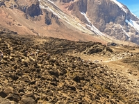Professional Kilimanjaro Ascent on Machame Route with Altezza Travel