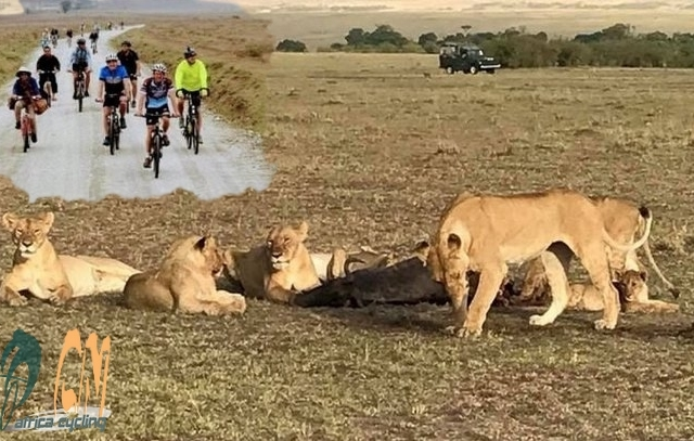 Adventure Cycling Kenya Tour Photos
