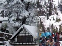 Shimla Tour Package By Volvo / Car, Shimla Honeymoon Package By Volvo