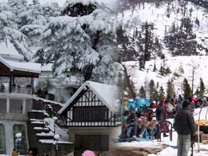 Shimla Tour Package By Volvo / Car, Shimla Honeymoon Package By Volvo Photos