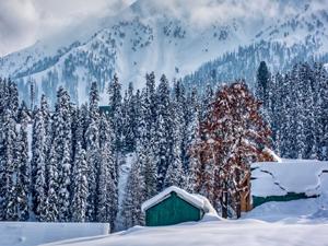 Kashmir Skiing Package
