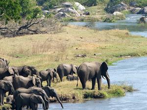 Conservation Malawi