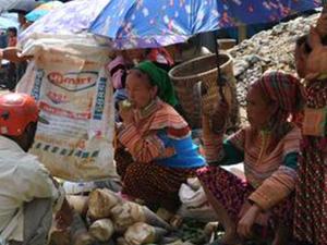 Hill Tribe Villages Northwest Vietnam Tour - 11 Days Photos