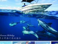 Speedboat Dolphins At Le Morne