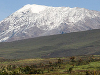 Kilimanjaro Seen From Marangu Route