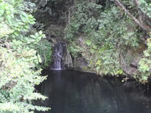 One Day Trip To Kilimanjaro - Marangu Route Photos