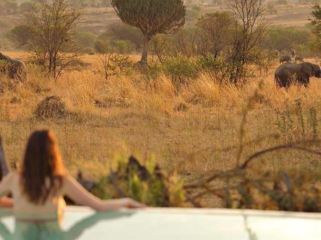 Tanzania Budget Safaris Photos