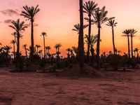 Grand Tour of Morocco - Private Guided Tour 5* Luxury