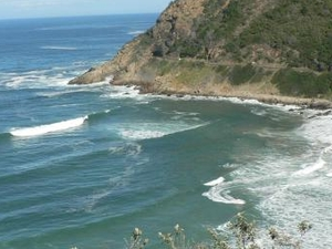 Garden Route Guided Tour - Cape Town to Port Elizabeth Fotos