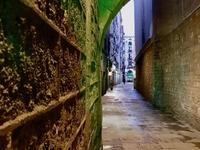 Barcelona Private Tour Gothic Quarter